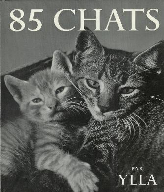 85枚の猫