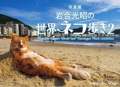 写真展 岩合光昭の世界ネコ歩き 2
